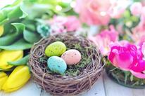 Frohe, friedvolle und gesegnete Ostern ... [Bild: jill111/ pixabay]