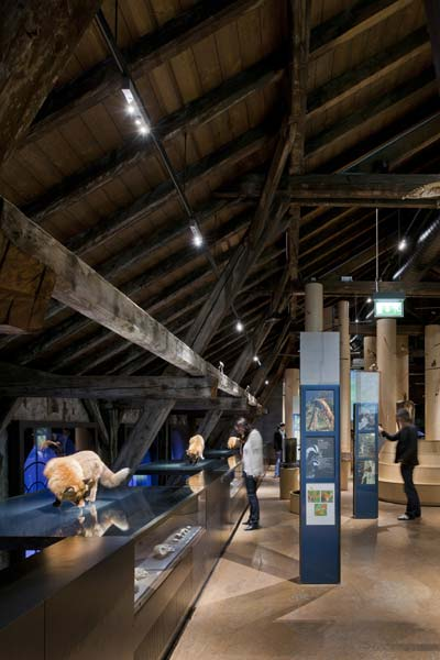 led lichtsystem setzt naturmuseum in szene on light. Black Bedroom Furniture Sets. Home Design Ideas